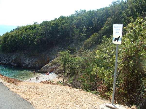 Plaža za pse 03814